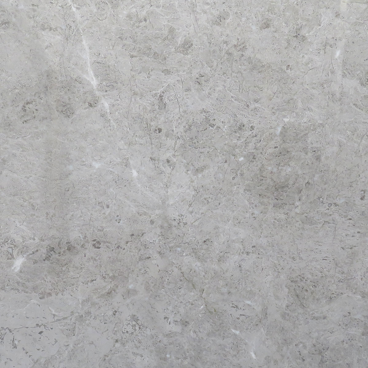 Tundra Grey Temmer Marble